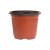 双色花盆种植育苗盆营养钵塑料育苗袋加厚塑料一次性园艺绿植花盆